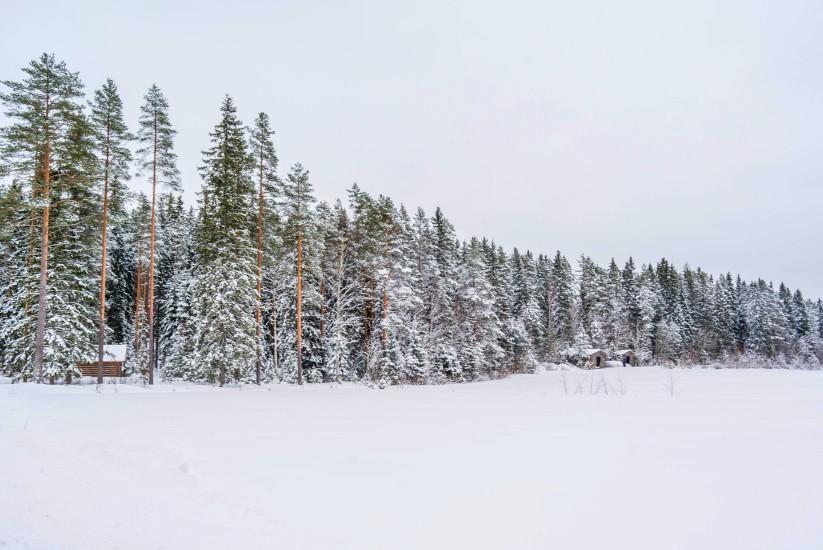 Finland 3