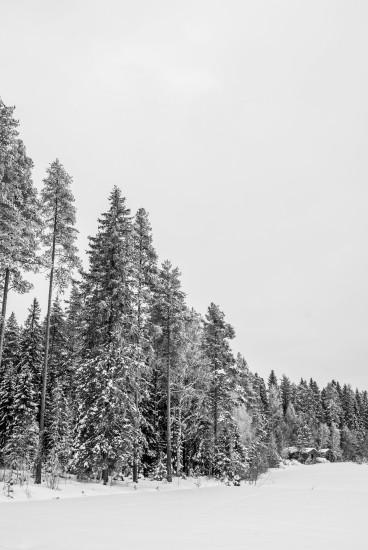 Finland 38