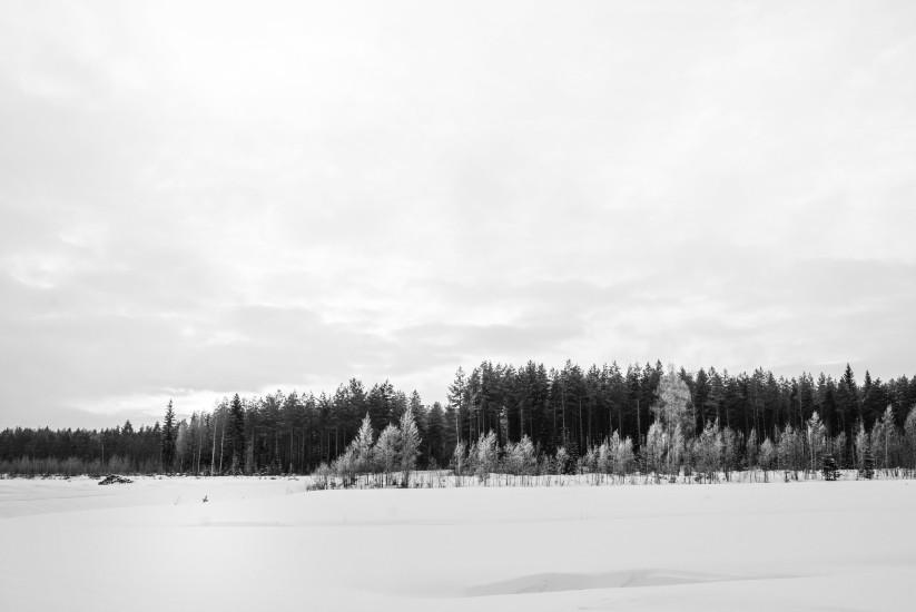 Finland 58