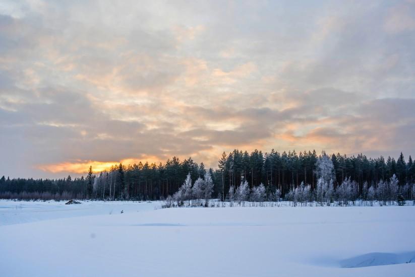 Finland 59