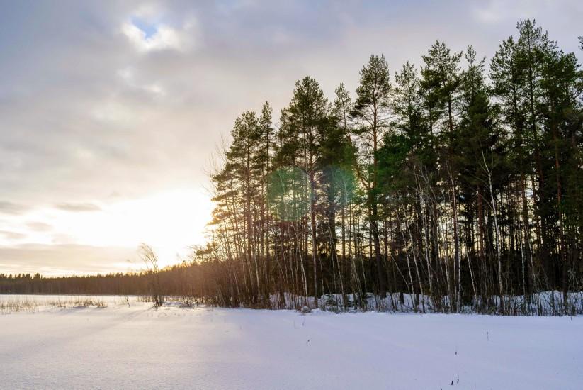 Finland 78