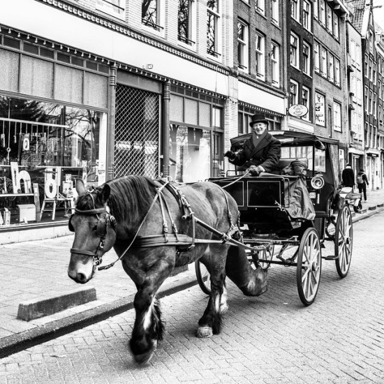 Horse and Carriage, Amsterdam