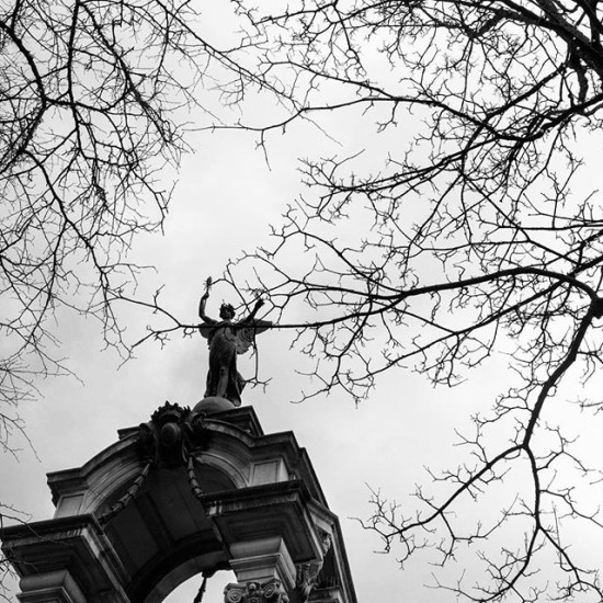 Angels in the trees, Belfast