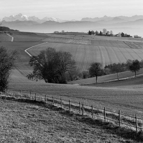 The view from Beautiful Burtigny