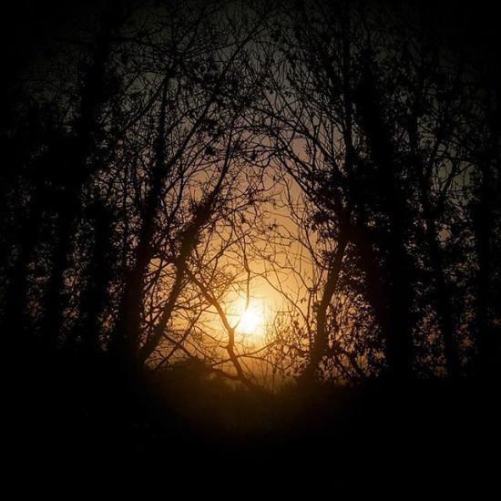 The Warm Glow